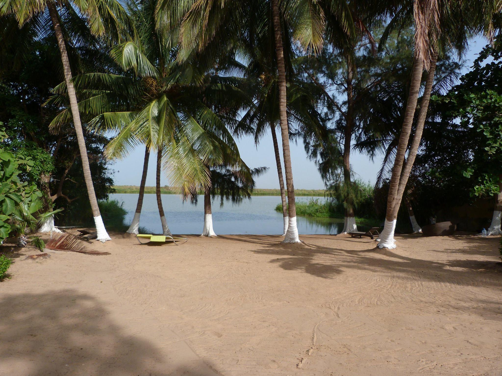lampsar Saint-Louis Sénégal